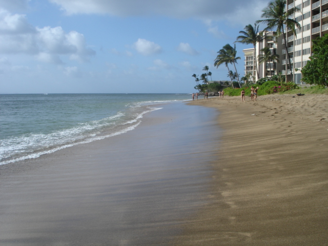 2 Bedroom + Loft Condo Maui Westside Steps To Kahana Beach